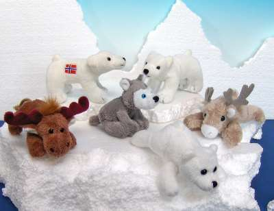 The Arctic Wildlife